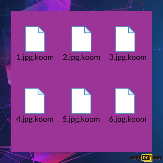 Koom file infection